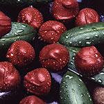 chocolate-thumb