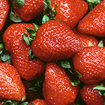 strawberries-thumb